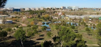 Parque vicente Blasco Ibañez_foto
