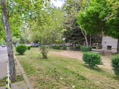 jardin_VCortijo_cespedCortado